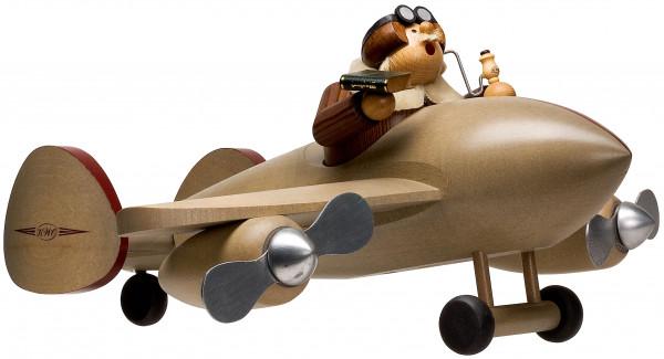 RM Pilot mit Flugzeug